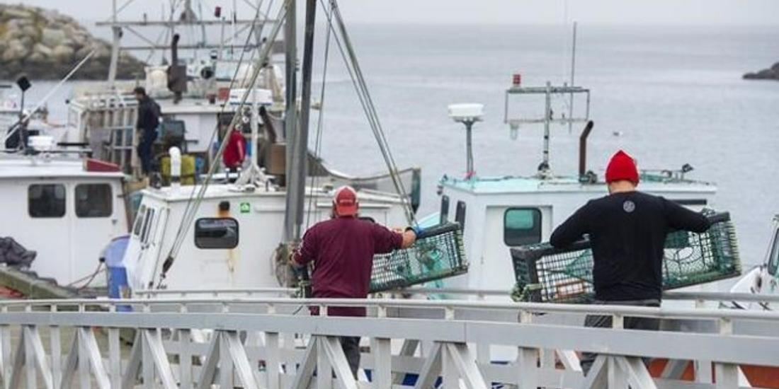 Nova Scotia RCMP say man faces assault charges in violent clash at lobster pound