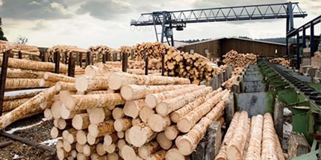 Canada has new ways to pressure Washington over softwood lumber duties: ambassador