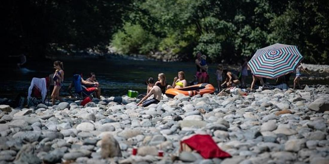 B.C. coroner says 719 deaths in a week during heat wave, but number could jump
