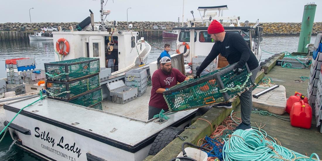 Nova Scotia Mi'kmaq chief casts doubt on Ottawa's bid to quell violence over lobster