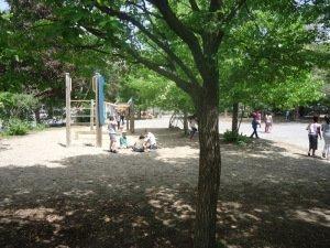Yard and kids