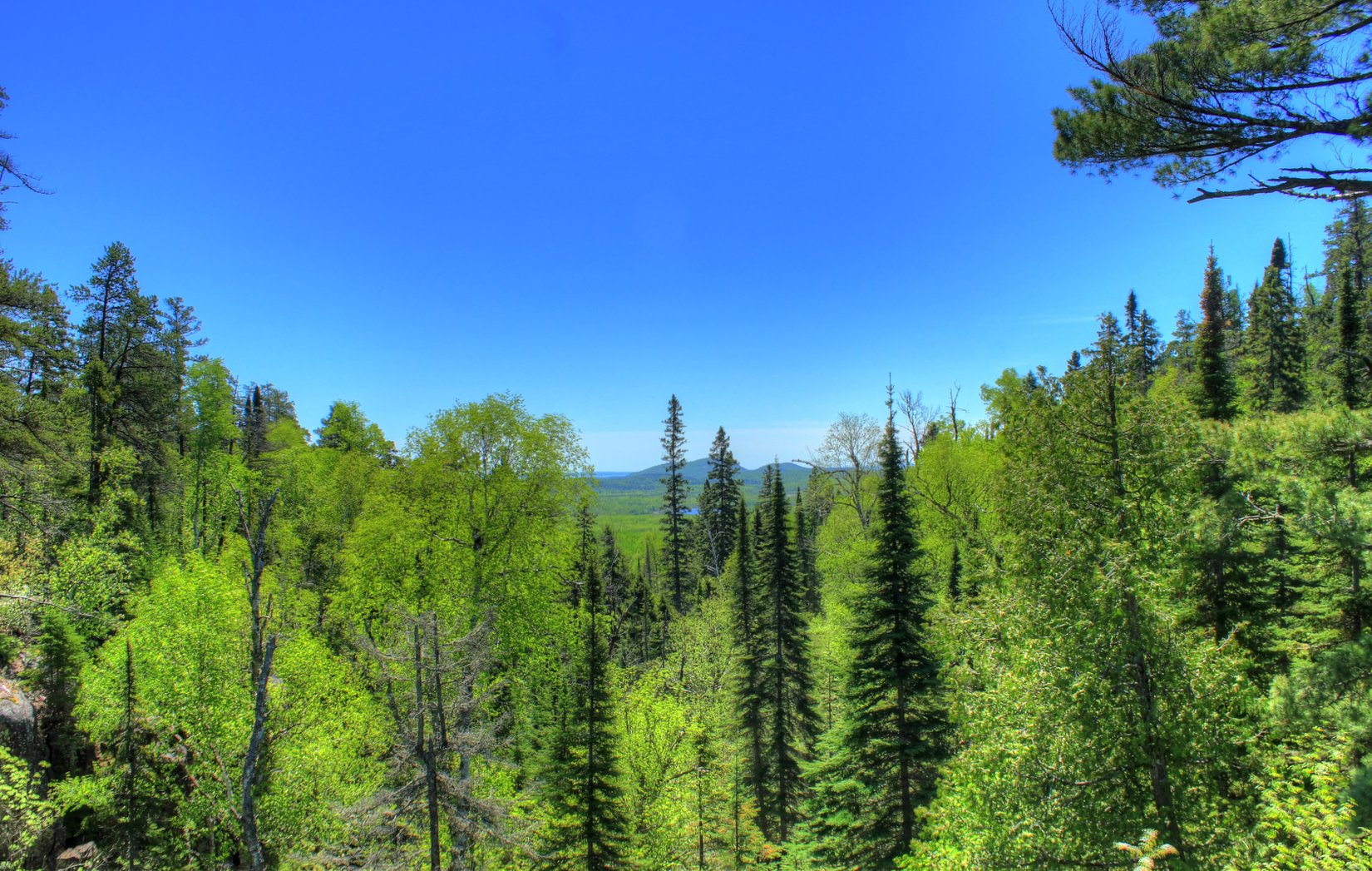 ontario-ouimet-canyon-provicial-park-looking-over-the-trees.jpg