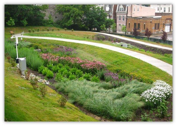 cdfe3845256f9e806439e400df8b1db1--rain-garden-urbanism
