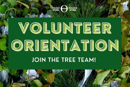 Tree Giveaway - Volunteer Orientation
