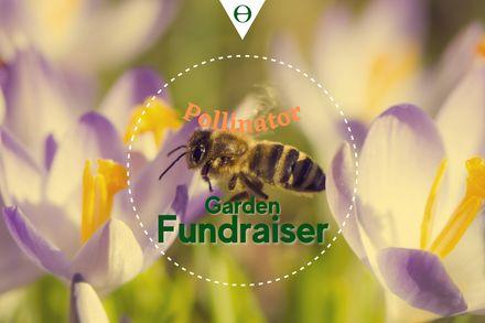 Pollinator Garden Fundraiser