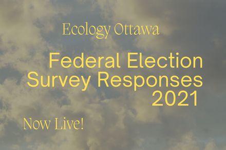 Federal Election Survey  Responses 2021