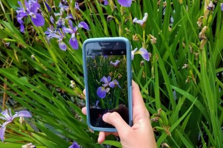 4 Ways To Champion Biodiversity