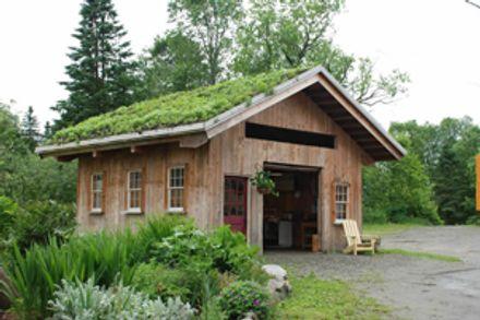 Les toits verts