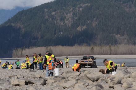 Fraser River Cleanup may be the largest event of its kind in B.C.