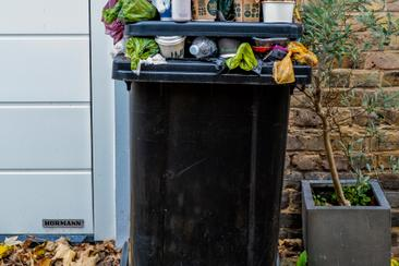 Memo - Curbside Waste Diversion Options