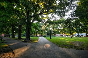 Letter to the Premier to open our parks
