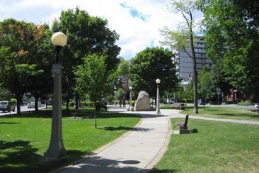City wants your input on what features should be in your parks and recreation centres