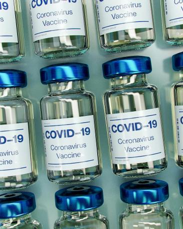 Vaccination Rollout in Parkdale—High Park
