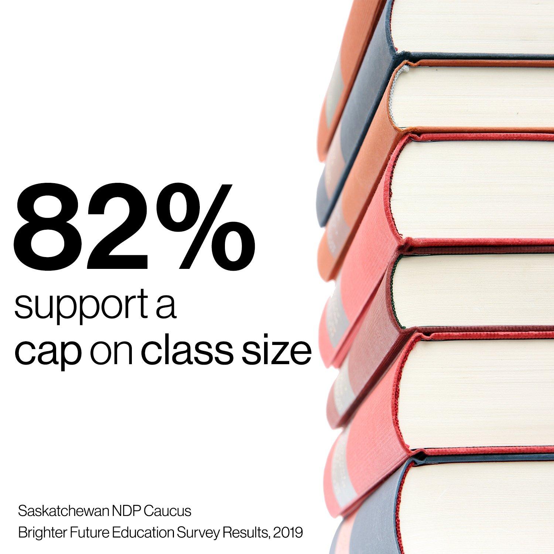 Survey Infographic Class Size