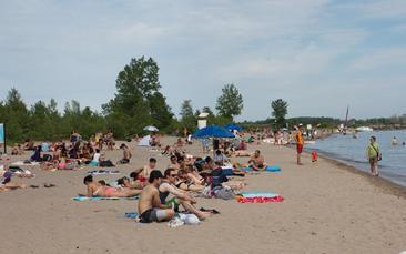 Ward's Island Beach